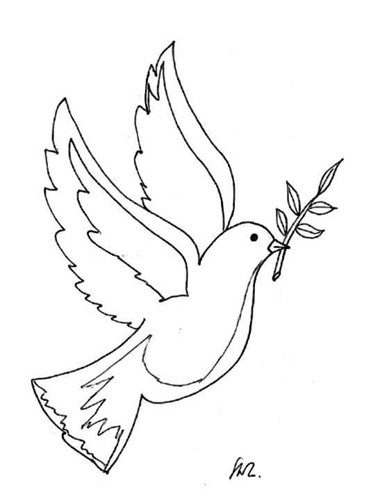 Taube Silhouette Weisse Taube Goldene Olivenzweig
