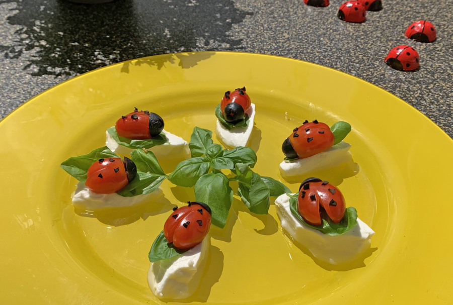 Tomatige Marienkäferchen