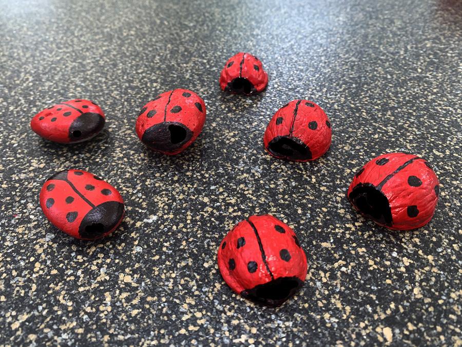 Putzige Marienkäfer aus Walnussschalen und Steinen