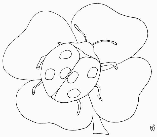 Marienkäfer auf einem Kleeblatt