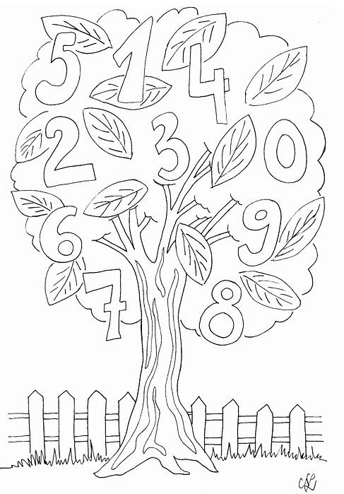 Zahlenbaum