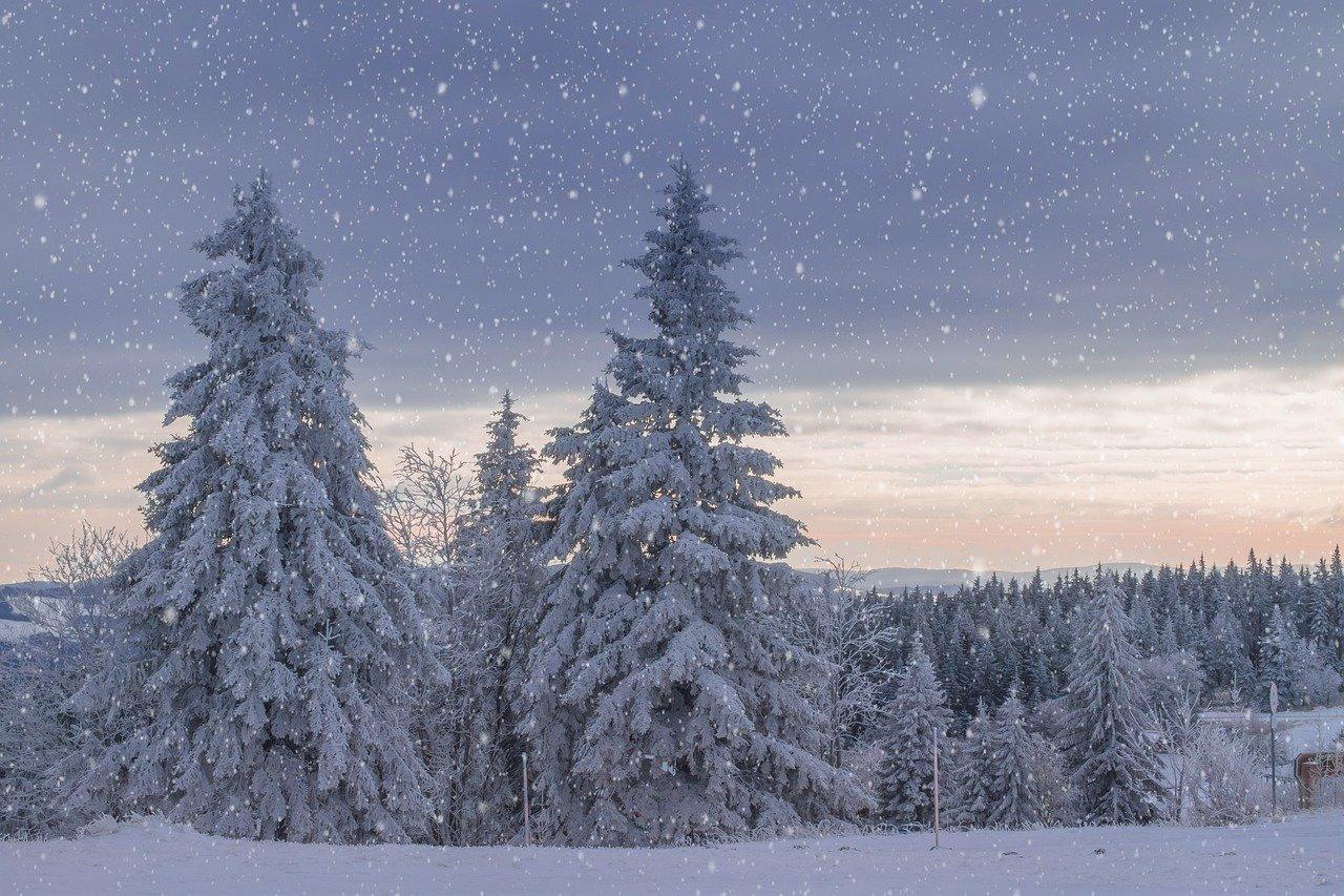 leise rieselt der schnee  kindergaudi