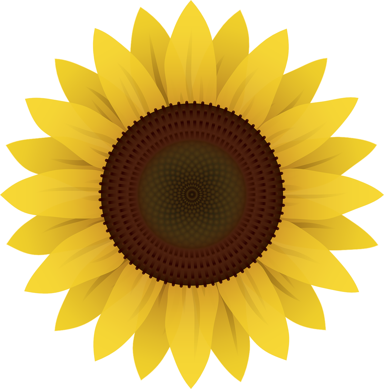 Das Sonnenblumen-Legespiel